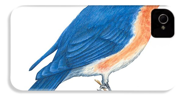 Eastern Bluebird IPhone 4 / 4s Case by Anonymous