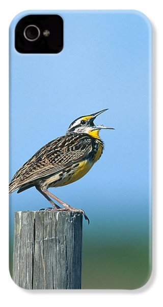 Eastern Meadowlark IPhone 4 Case by Paul J. Fusco