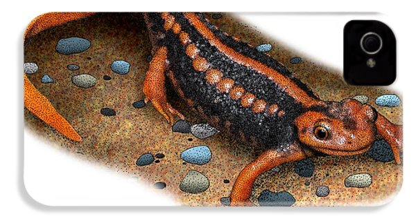Emperor Newt IPhone 4 Case by Roger Hall