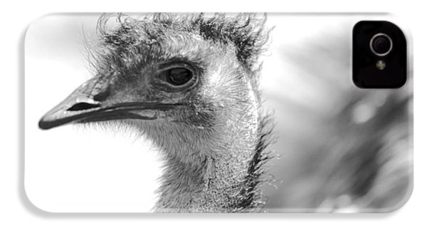 Emu - Black And White IPhone 4 Case by Carol Groenen