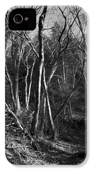 IPhone 4 Case featuring the photograph Enchanted Forest by Yulia Kazansky