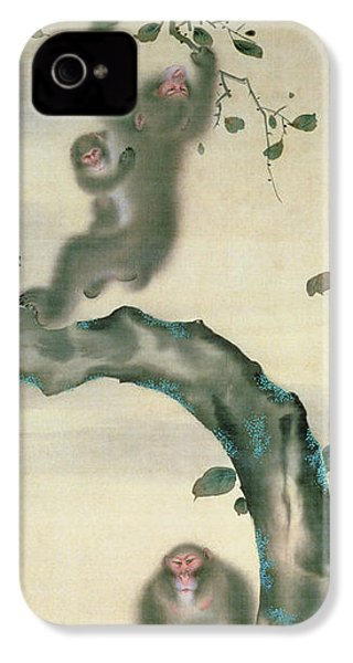 Family Of Monkeys In A Tree IPhone 4 Case by Japanese School