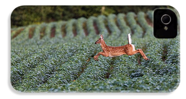 Flight Of The White-tailed Deer IPhone 4 Case by Everet Regal