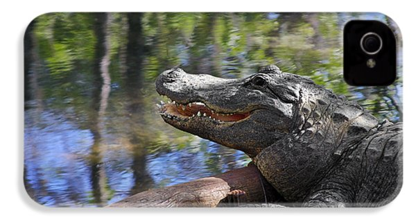 Florida - Where The Alligator Smiles IPhone 4 Case by Christine Till