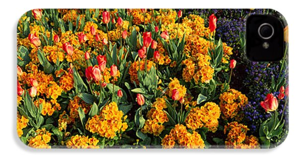 Flowers In Hyde Park, City IPhone 4 / 4s Case by Panoramic Images