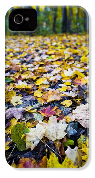 IPhone 4 Case featuring the photograph Foliage by Sebastian Musial