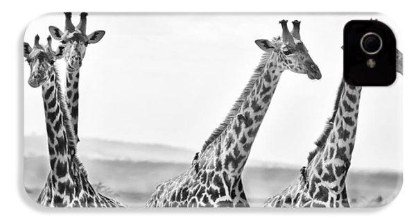 Four Giraffes IPhone 4 Case by Adam Romanowicz