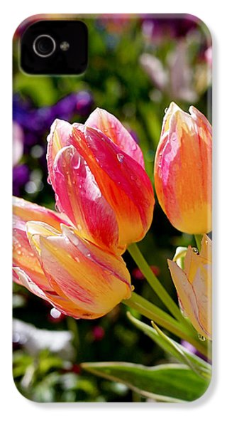 Fresh Tulips IPhone 4 Case by Rona Black
