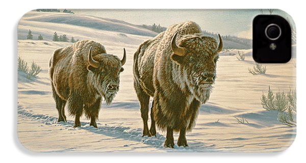Frosty Morning - Buffalo IPhone 4 Case by Paul Krapf