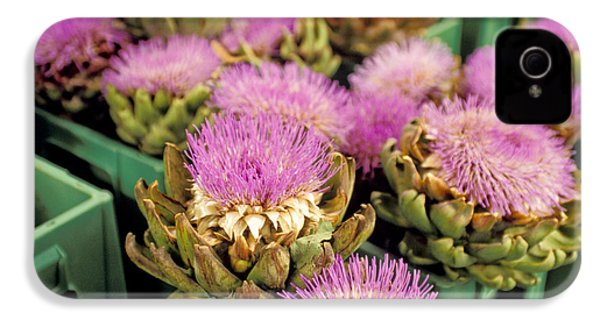 Germany Aachen Munsterplatz Artichoke Flowers IPhone 4 / 4s Case by Anonymous