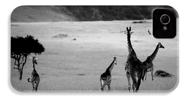 Giraffe In Black And White IPhone 4 Case by Sebastian Musial
