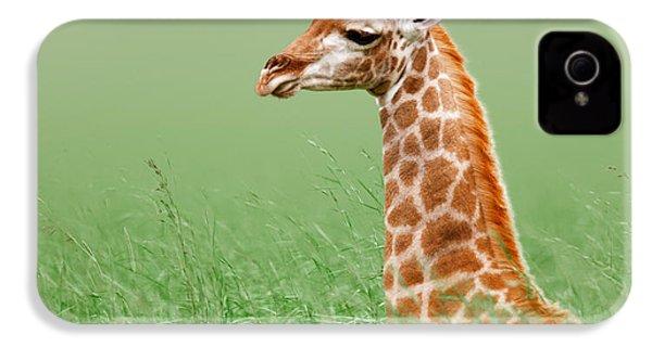 Giraffe Lying In Grass IPhone 4 Case