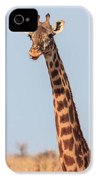 Giraffe Tongue IPhone 4 Case by Adam Romanowicz