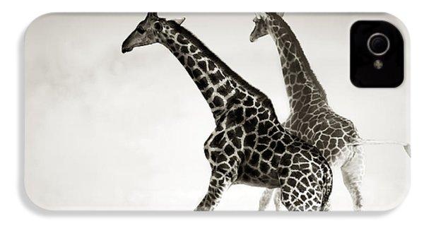 Giraffes Fleeing IPhone 4 Case by Johan Swanepoel