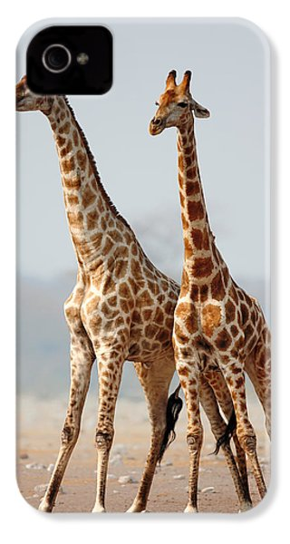Giraffes Standing Together IPhone 4 Case by Johan Swanepoel