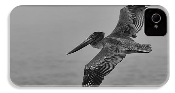 Gliding Pelican In Black And White IPhone 4 / 4s Case by Sebastian Musial