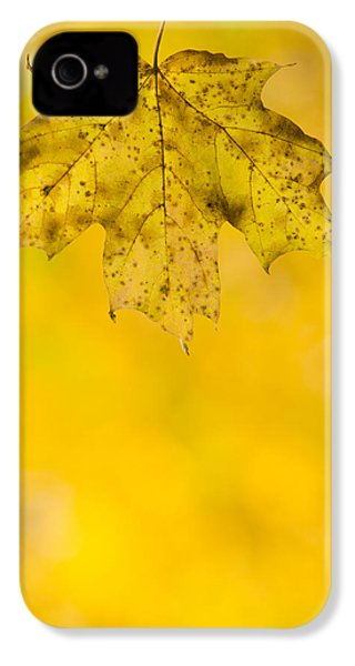 IPhone 4 Case featuring the photograph Golden Autumn by Sebastian Musial
