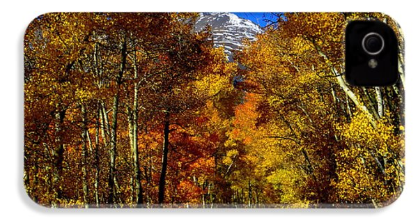 IPhone 4 Case featuring the photograph Golden Tunnel by Karen Shackles