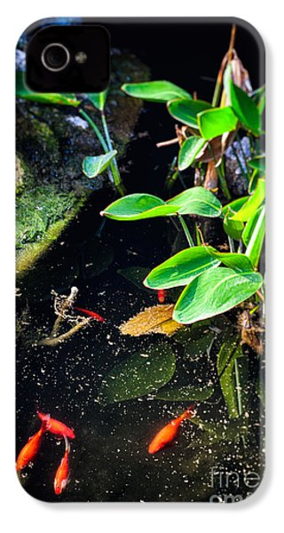 IPhone 4 Case featuring the photograph Goldfish In Pond by Silvia Ganora