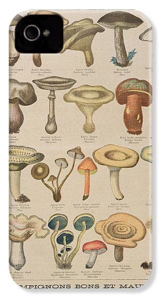 Good And Bad Mushrooms IPhone 4 / 4s Case by French School
