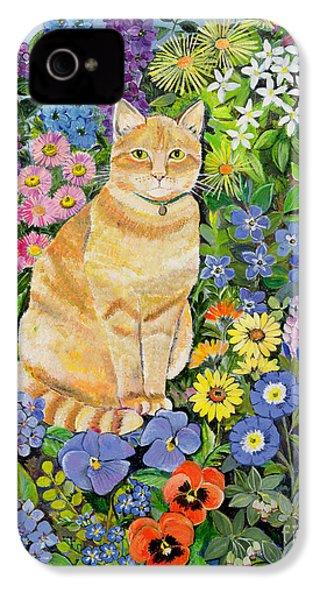 Gordon S Cat IPhone 4 Case