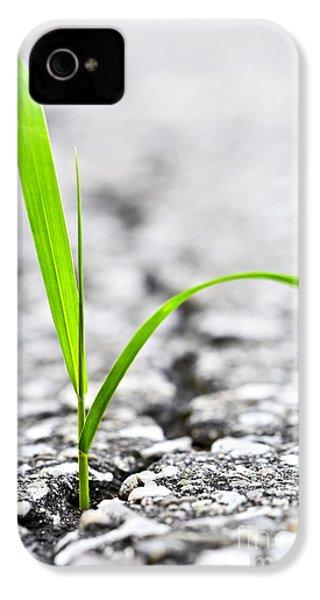 Grass In Asphalt IPhone 4 Case by Elena Elisseeva