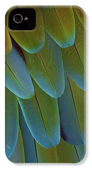 Green-winged Macaw Wing Feathers IPhone 4 Case by Darrell Gulin