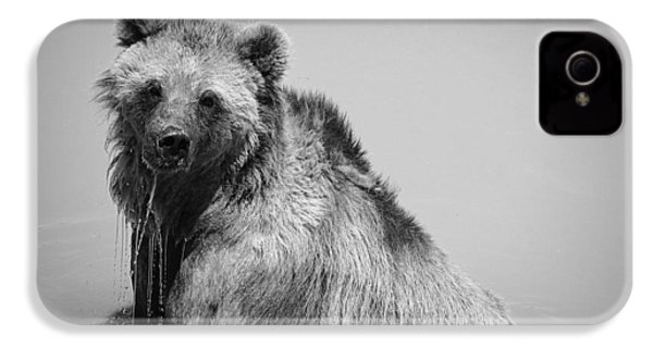 IPhone 4 Case featuring the photograph Grizzly Bear Bath Time by Karen Shackles
