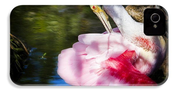Preening Spoonbill IPhone 4 Case by Mark Andrew Thomas