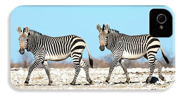Hartmann's Mountain Zebra IPhone 4 / 4s Case by Tony Camacho