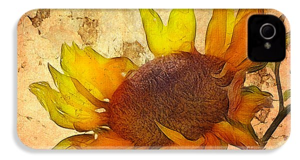 Helianthus IPhone 4 Case by John Edwards