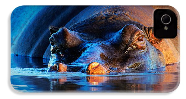 Hippopotamus  At Sunset IPhone 4 Case by Johan Swanepoel