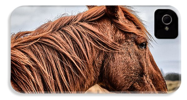 Horsey Horsey IPhone 4 / 4s Case by John Farnan