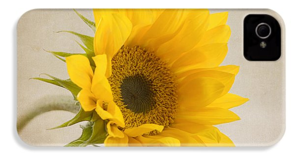 I See Sunshine IPhone 4 Case by Kim Hojnacki