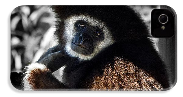 I Think I Could Like You IPhone 4 Case by Miroslava Jurcik