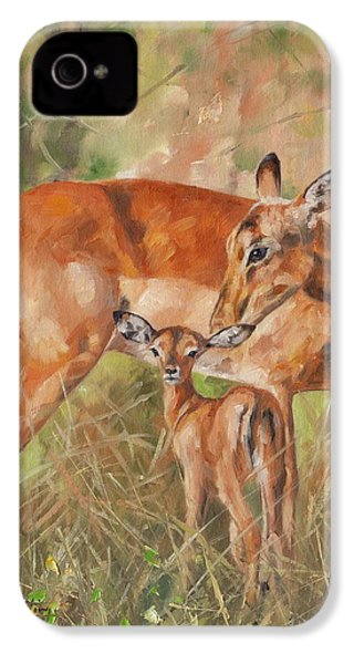 Impala Antelop IPhone 4 Case by David Stribbling