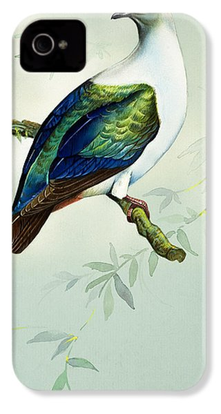 Imperial Fruit Pigeon IPhone 4 Case by Bert Illoss