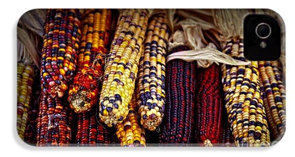 Indian Corn IPhone 4 Case by Elena Elisseeva