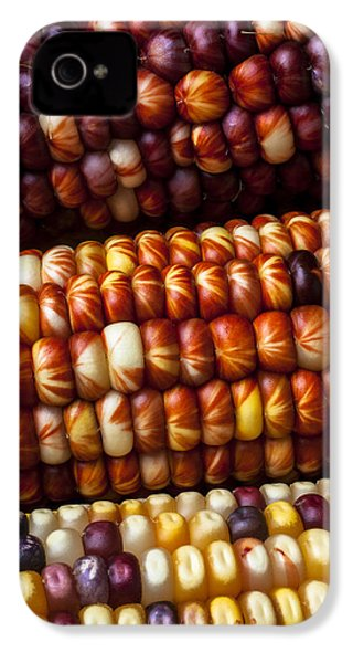 Indian Corn Harvest Time IPhone 4 Case by Garry Gay