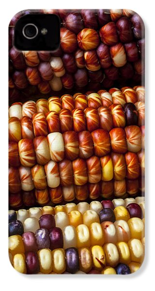 Indian Corn Harvest Time IPhone 4 / 4s Case by Garry Gay