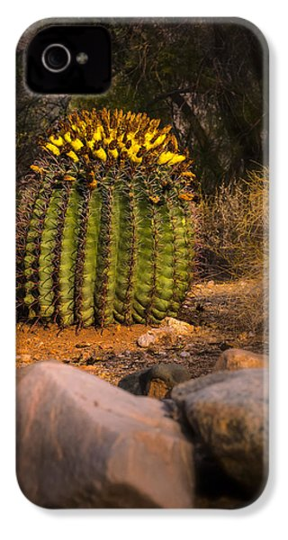 IPhone 4 Case featuring the photograph Into The Prickly Barrel by Mark Myhaver