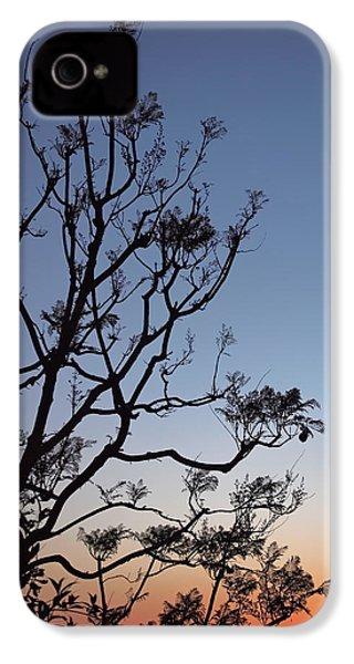 Jacaranda Sunset IPhone 4 / 4s Case by Rona Black