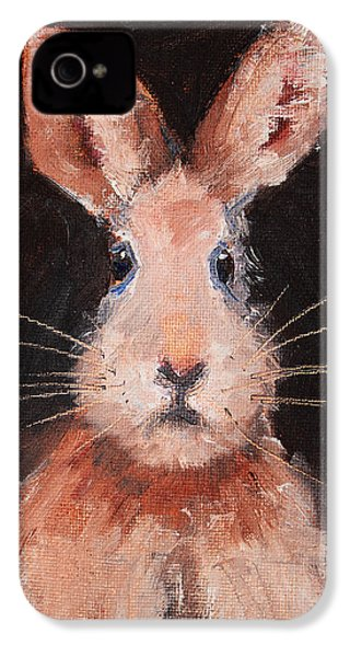 Jack Rabbit IPhone 4 Case by Nancy Merkle