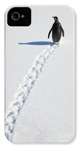 King Penguin And Tracks S Georgia Island IPhone 4 / 4s Case by Yva Momatiuk and John Eastcott