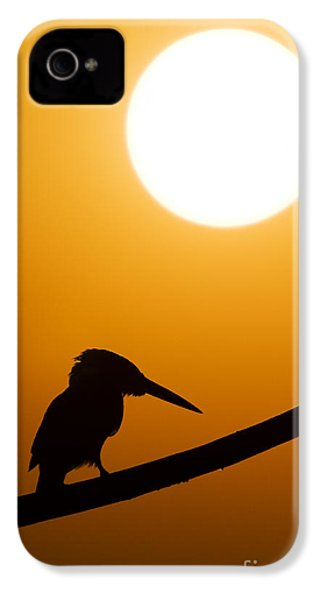 Kingfisher Sunset Silhouette IPhone 4 Case