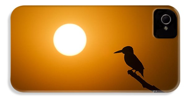 Kingfisher Sunset IPhone 4 / 4s Case by Tim Gainey