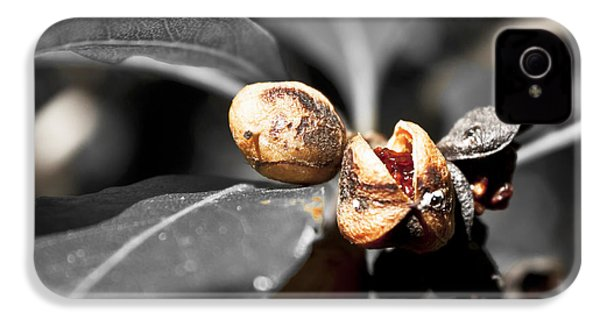 IPhone 4 Case featuring the photograph Knew Seeds Of Complentation by Miroslava Jurcik