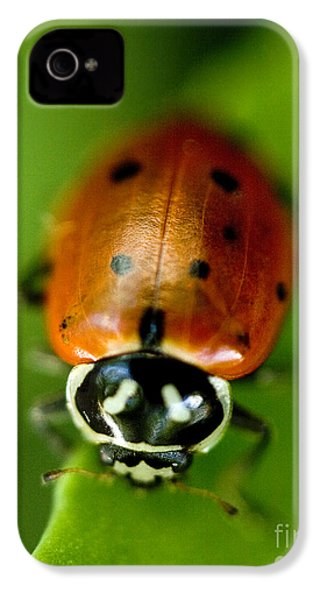 Ladybug On Green IPhone 4 Case by Iris Richardson