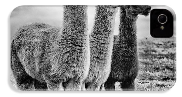 Lama Lineup IPhone 4 / 4s Case by John Farnan