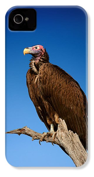 Lappetfaced Vulture Against Blue Sky IPhone 4 / 4s Case by Johan Swanepoel